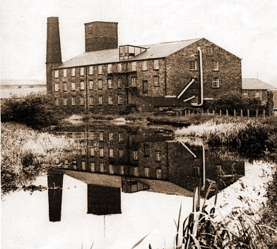 Picture 1. Daniel Woods Mill before the fire of 1986